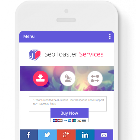 seotoaster-services